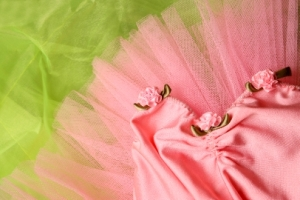 green__pink_tutu_-_website